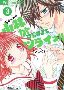 Кобаяши настолько милые, что аж больно! / Kobayashi ga Kawaisugite Tsurai!! постер
