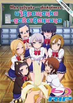 Моя девушка — убежденная извращенка-девственница / Boku no Kanojo ga Majime Sugiru Shobitch na Ken постер