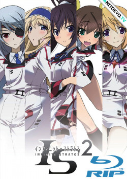 Необъятные небеса [ТВ-2] / IS: Infinite Stratos 2 постер